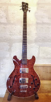 Warwick Star-bass
